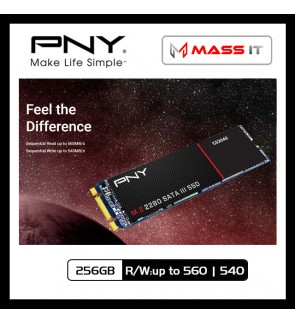 PNY CS2040 256GB M.2 2280 SATA III SSD (R/W:up to 560 | 540)